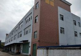 赣县茅店企业创业园5000平米三层厂房整栋出租