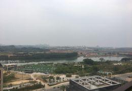 起点一中心·湖景高层大5房3卫 大气10米南阳台