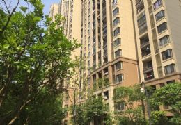 中海国际社区,190平米大平层带车位230万,契税