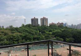 杨梅渡公园旁148平米4室2厅2卫出售