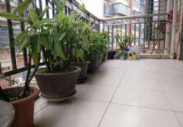 金湾花园 5室2厅2卫 售7100/㎡精装修带柴间