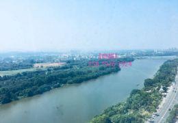 尚江尊品·新 全新豪装未住 俯瞰江景——正规大5房