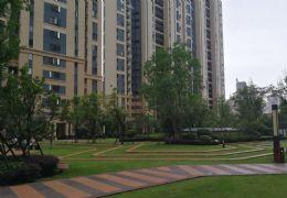 章江新区、中海社区、楼王精装3房、低于市场价30万
