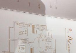 蓉江新区联泰 天璞110㎡江景学区直接上户  急售
