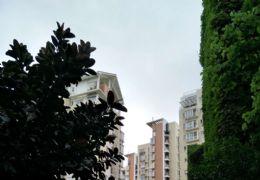 蔚蓝半岛正规大气三房 小区环境绿化超好 户型超赞