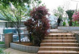 章江北大道 210平方4房带车库 花园 149万