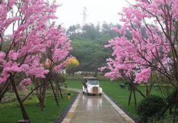 赣州翡翠谷四合院,仅此一家有,300亩山体公园里的