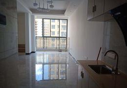 圣地亚哥44平米1室1厅1卫出售