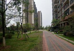 开发区高铁入口劲嘉山与城 全新装修未入住现房每平九