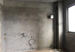 章江新区标准板楼大气三房单价仅1万多