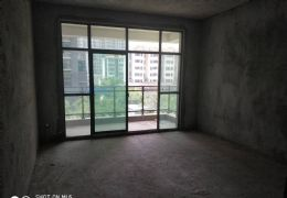 恒大名都旁电梯房119平米3室2厅2卫出售