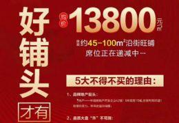 临街金铺,火热来袭,买一层送一层单价12500起!