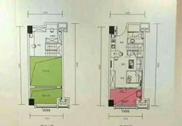 6.6米层高奢侈复式公寓买一套送一套两个电梯门