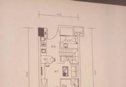 万象城边6.6米绝版层高公寓买一层送一层