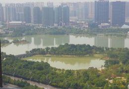 章江新区万象城附近 一线湖景 10米超大阳台带车位