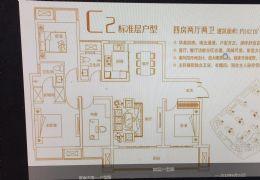 联泰天璞142㎡江景学区四房 直接上户!!