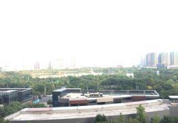章江新区云星公园大观一线湖景272平米仅售360万
