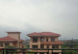 九里峰山 5室3厅 350万 280平花园别墅出售