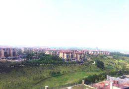 九里峰山·性价比最高独栋 私家花园600㎡730万