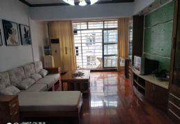 文清路小学全新精装105平米3室2厅1卫出售