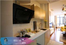 江边公寓,一室一厅,单价1150起步,带豪华装修