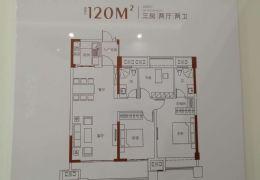 嘉福尚江府 豪宅標桿 大氣3房 純板房一線江景戶型