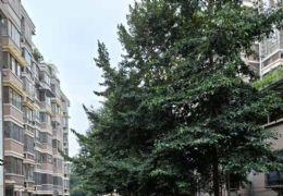 金湾花园188平米4室2厅2卫带柴间出售135万