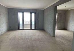嘉福金融中心 183平南北通透三阳台225万出售