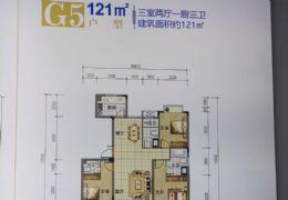 紫金瀚江府120平米3室2厅3卫出售