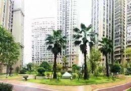 黄金地段学区住宅  单价仅售8800/㎡  抢!!