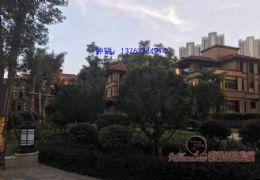 章江新区 仅有的大别墅使用面积800多平 非常稀缺