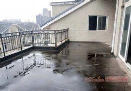 新区5房复式,业主急售。8000/㎡抛售!!!
