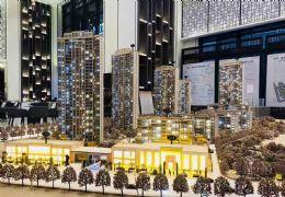 赣州~赣县中心区域8万左右 高端品质8000四房售
