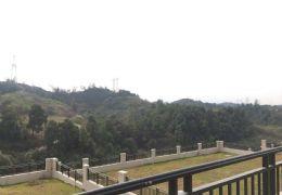 九里峰山-山景独栋-送800平私家花园 售670万