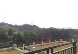 九里峰山·超高性价比独栋——坐享山景园林 675万