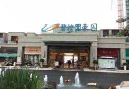 碧桂园豪园 赣县城南新区中心位置全新精装修交付高端