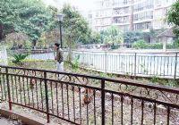 章江新区1.1万单价前后双花园大三房南北双阳台