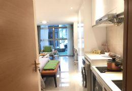 章江新区沃尔玛之上 5米层高复式公寓 买一层送一层