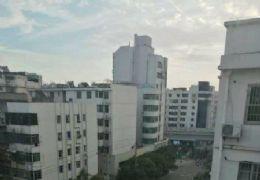 南门口 东阳山路 复式6房  带露台 仅88万
