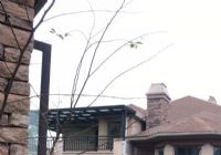 星洲湾457平米独栋别墅 花园480平米便宜急出售