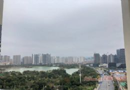 章江新区万象城中央生态公园旁正规四房仅售130万