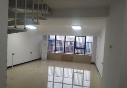 达芬奇国际中心写字楼公寓工作室5米层高复式楼出租