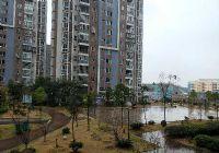 开发区学区三房,单价8600,首付32万,超宽楼距