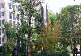 时间公园108平米3室2厅2卫出售时光赣州水东