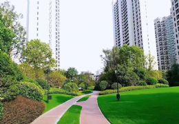 双学区口 新力物业 首付只要16万 花园顶级住宅