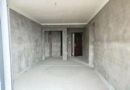 新城区中海华府  未来地铁口  88方环境优雅两房