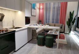 总价50万买章江新区生态公园旁湖景复式SOHO公寓