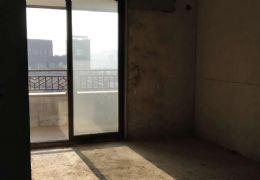 嘉福金融中心185平大平层 双方卧 双阳台 单价1
