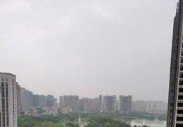 生态公园旁公园首府142平米南北通透大阳台看湖景