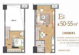 下楼就是中央公园 55平米2室1厅1卫出售